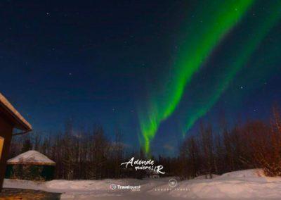 auroras borelaes yukon 4
