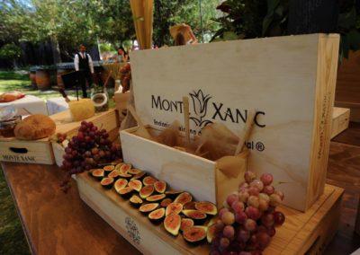 viñedo-monte-xanic-gourmet