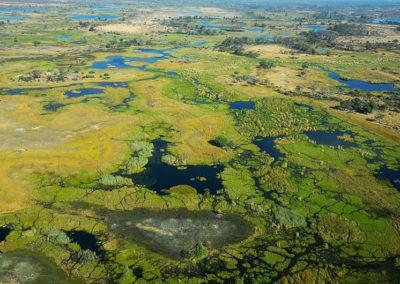 Okavango_delta_-_Botswana_-_panoramio