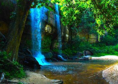 shimba-hills-national