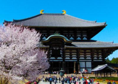 Nara_Temple_bouddhiste_Todai-ji