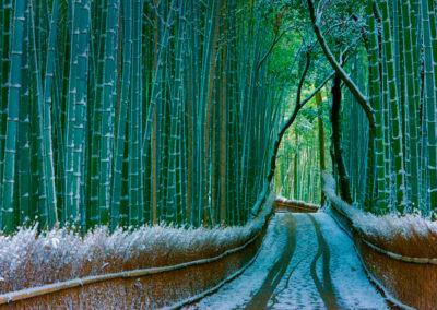 sagano-arashiyama