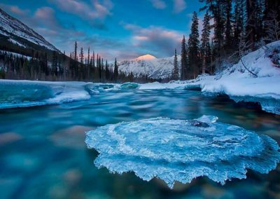 Yukon-Canada-ice-river-trees-winter