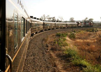 Viaje-en-Tren-Guadalajara-Tequila-Guadalajara-825x510