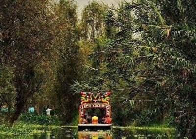 viaje-o-tour-xochimilco-y-coyoacan-D_NQ_NP_922667-MLM28207051306_092018-F
